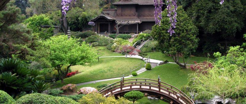 Bahçe Dekorasyonu & Fikirler