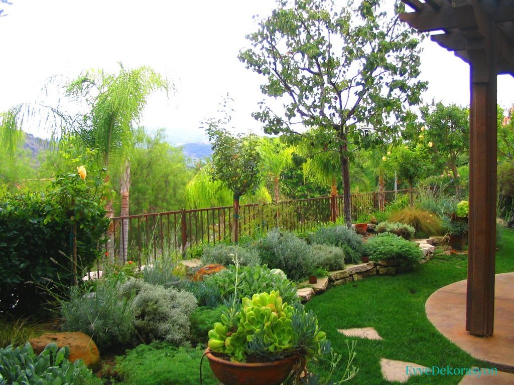 Küçük ev bahçesi