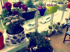 Balkon Çiçek Süslemesi