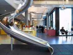 Amerika Google Merkez Ofis Dekorasyonu